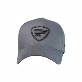 black logo/gray  baseball cap